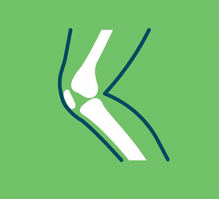 Orthopedics & Arthroscopy